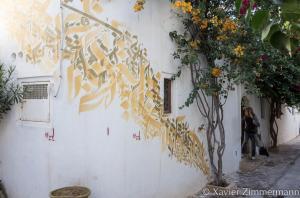 Djerbahood, artiste : INKMAN (Tunisie)