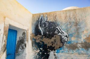Djerbahood, artiste : C215 (France)