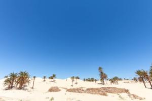 Douz - Porte du désert